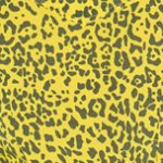 Leopardo Amarillo (s)