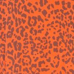 Leopardo Caldero